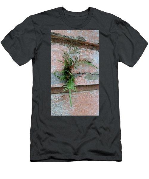 Wall Fern Men's T-Shirt (Athletic Fit)
