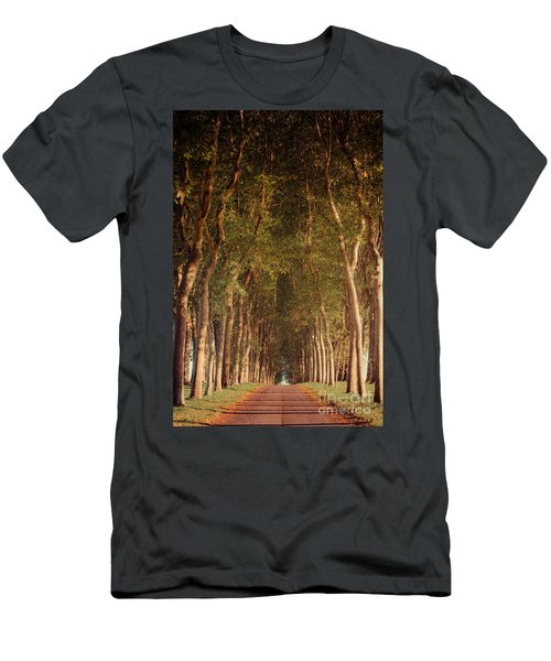 Warm French Tree Lined Country Lane Men's T-Shirt (Athletic Fit)