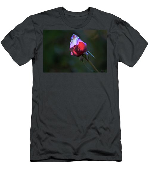 Water Droplets On The Rose Men's T-Shirt (Slim Fit) by Michael Courtney