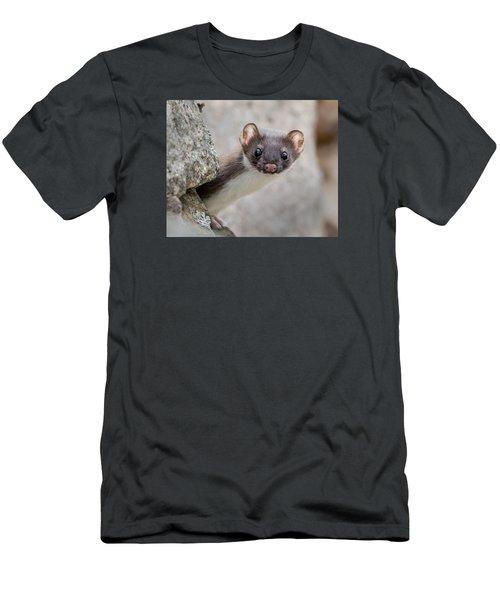 Weasel Peek-a-boo Men's T-Shirt (Slim Fit) by Stephen Flint
