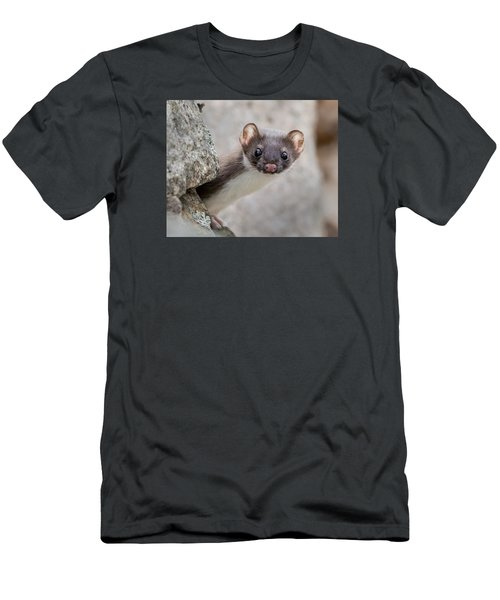 Weasel Peek-a-boo Men's T-Shirt (Athletic Fit)