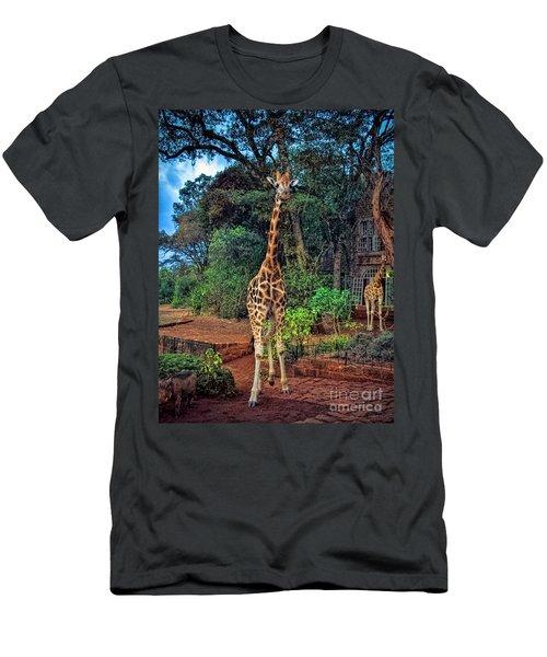 Welcome To Giraffe Manor Men's T-Shirt (Slim Fit) by Karen Lewis