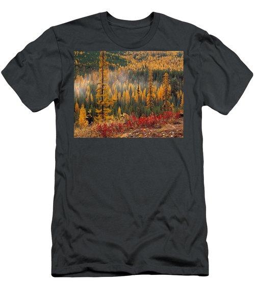 Western Larch Forest Autumn Men's T-Shirt (Athletic Fit)