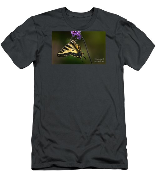 Western Tiger Swallowtail Butterfly On Purble Verbena Men's T-Shirt (Athletic Fit)