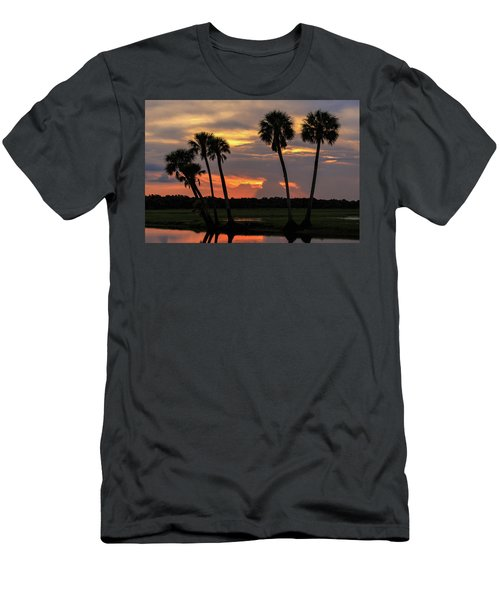 Wetlands Sunset Men's T-Shirt (Athletic Fit)
