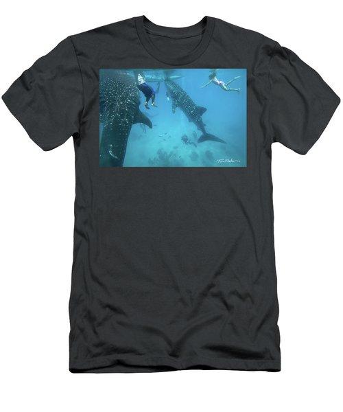 Whale Sharks Men's T-Shirt (Slim Fit) by Tim Fitzharris