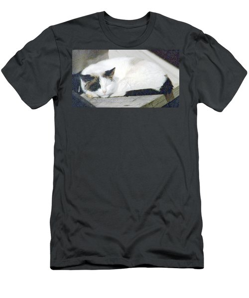 What Do Cats Dream Of #2 Men's T-Shirt (Athletic Fit)