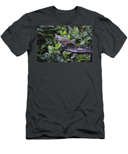 What Is That? Men's T-Shirt (Athletic Fit)