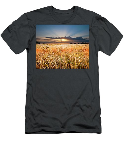 Wheat At Sunset Men's T-Shirt (Athletic Fit)