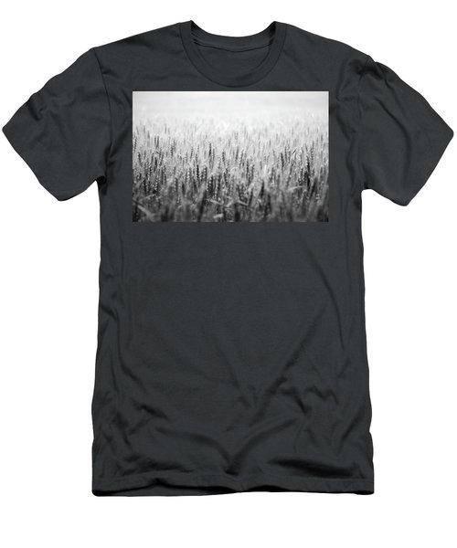 Wheat Field Men's T-Shirt (Athletic Fit)