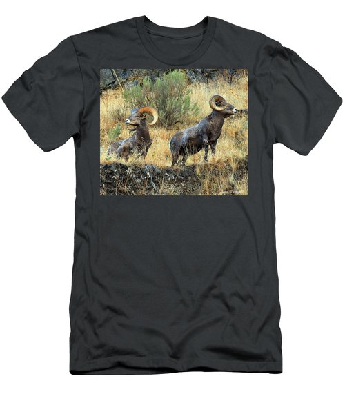 Where Did They Go? Men's T-Shirt (Slim Fit) by Steve Warnstaff