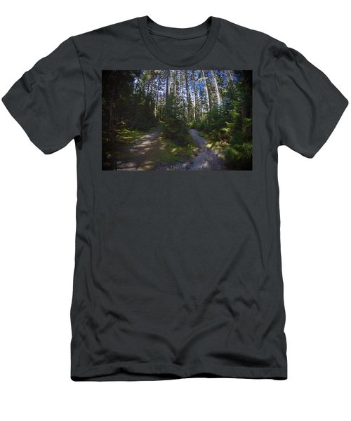 Which Path? Men's T-Shirt (Athletic Fit)