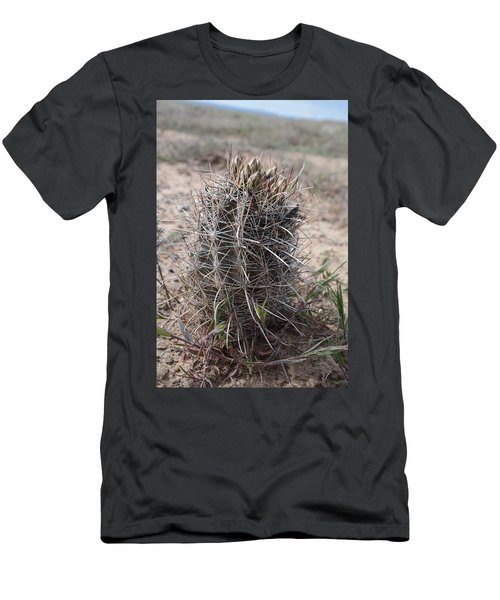 Whipple's Fishook Cactus Men's T-Shirt (Slim Fit) by Jenessa Rahn