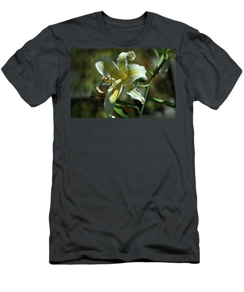 White And Yellow Asiatic Lilly No 1 Men's T-Shirt (Athletic Fit)