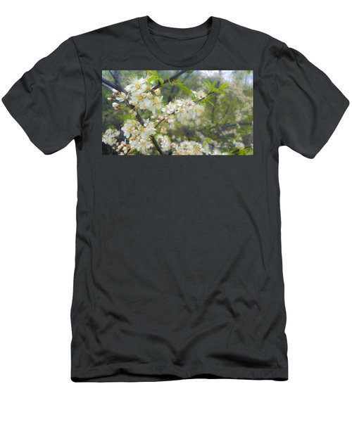 White Blossoms On Fruit Tree Men's T-Shirt (Athletic Fit)