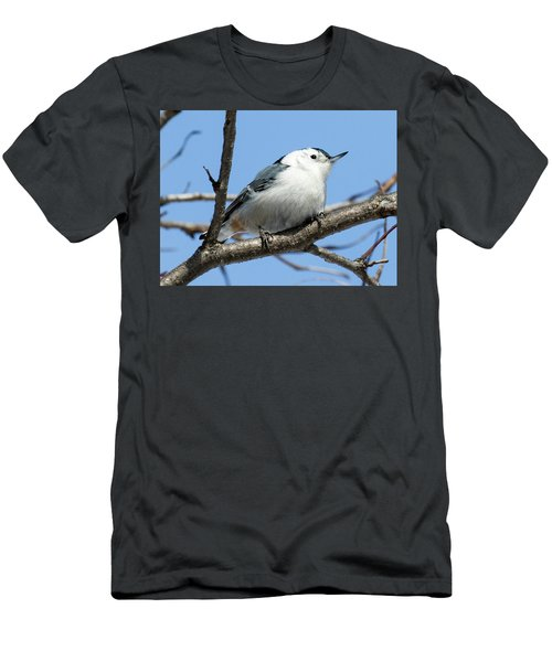 White-breasted Nuthatch Perched Men's T-Shirt (Athletic Fit)