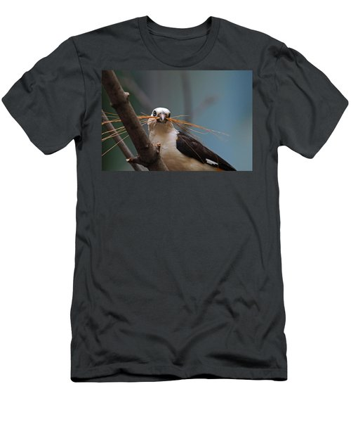 White-headed Buffalo Weaver Men's T-Shirt (Athletic Fit)
