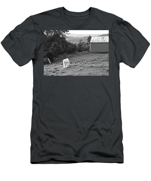 White Horse, New York Men's T-Shirt (Athletic Fit)