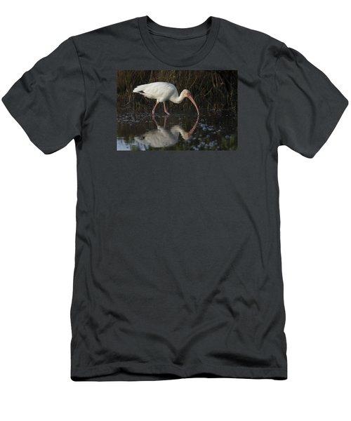White Ibis Feeding In Morning Light Men's T-Shirt (Athletic Fit)