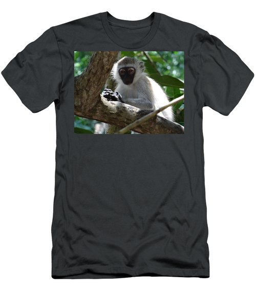 White Monkey In A Tree 4 Men's T-Shirt (Athletic Fit)