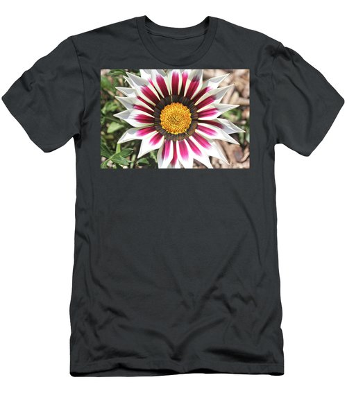 Men's T-Shirt (Athletic Fit) featuring the photograph White Striped Gazania by Trina Ansel
