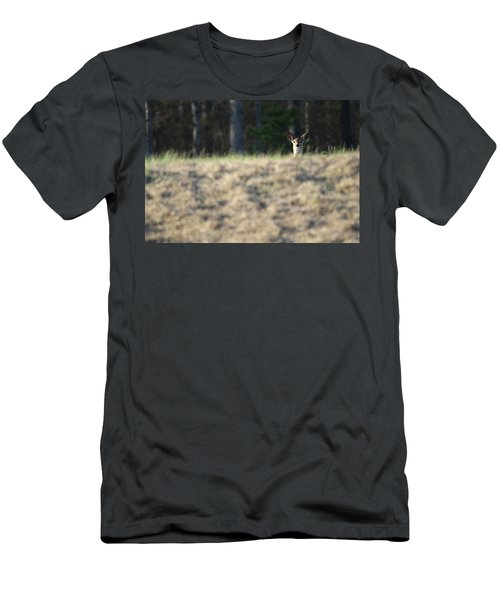 White Tailed Deer Calverton New York Men's T-Shirt (Athletic Fit)