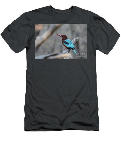 White-throated Kingfisher 02 Men's T-Shirt (Athletic Fit)