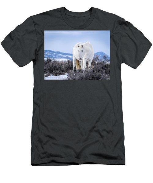 White Wild Horse Mystic Of Sand Wash Basin Men's T-Shirt (Athletic Fit)