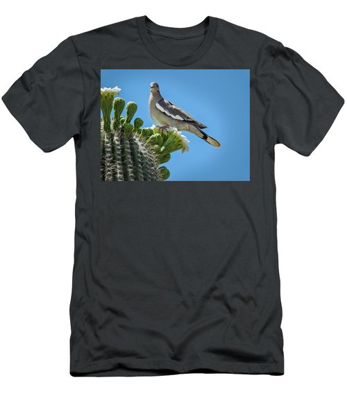 White Winged Dove On Cactus Flower Men's T-Shirt (Slim Fit) by Penny Lisowski