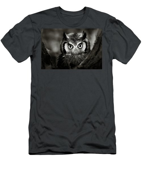 Whitefaced Owl Men's T-Shirt (Athletic Fit)