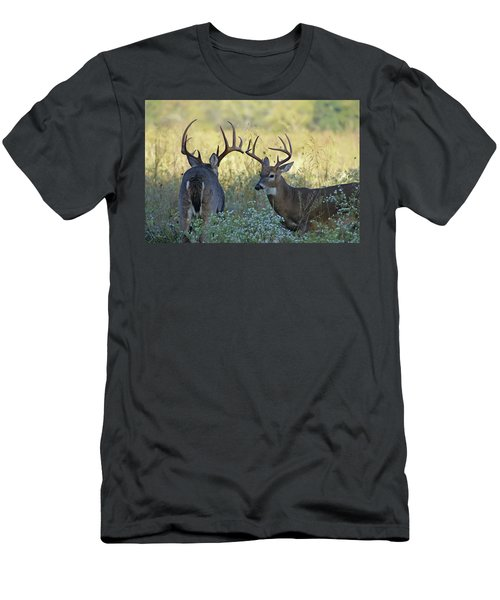 Whitetail Standoff Men's T-Shirt (Athletic Fit)
