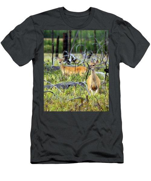 Whitetails Men's T-Shirt (Athletic Fit)