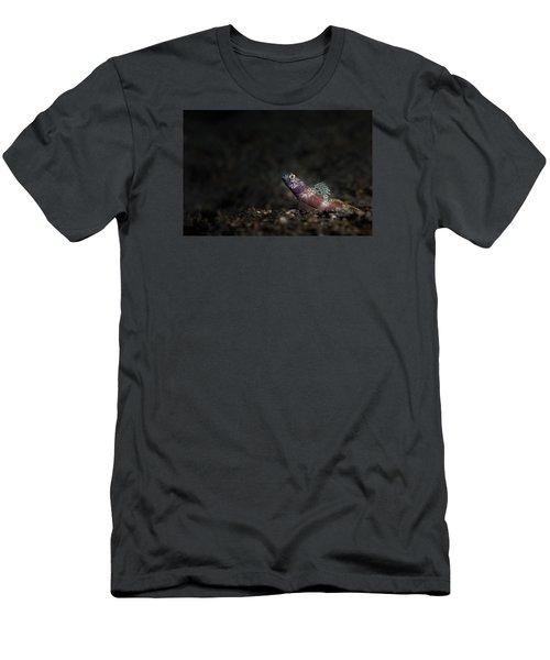 Wide-barred Shrimp Goby Men's T-Shirt (Athletic Fit)