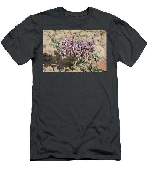 Widewing Spring Parsley Men's T-Shirt (Slim Fit) by Jenessa Rahn