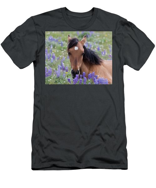 Wild Horse Among Lupines Men's T-Shirt (Athletic Fit)