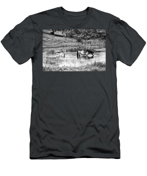 Wild Horses Bw2 Men's T-Shirt (Athletic Fit)