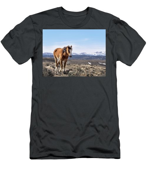 Wild Mustang Filly Of Sand Wash Basin Men's T-Shirt (Athletic Fit)