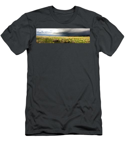 Wildflower Panorama 2008 Men's T-Shirt (Athletic Fit)
