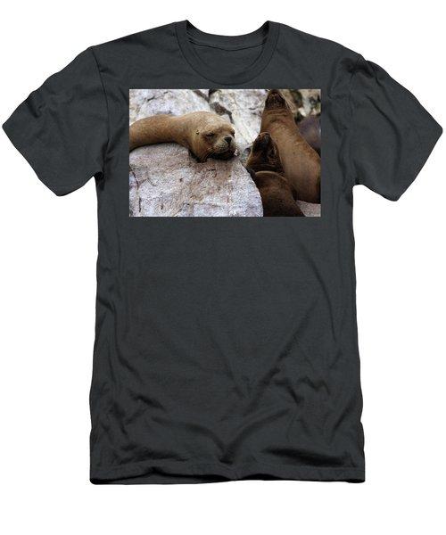 Wildlife Of The Ballestas Islands Men's T-Shirt (Slim Fit) by Aidan Moran