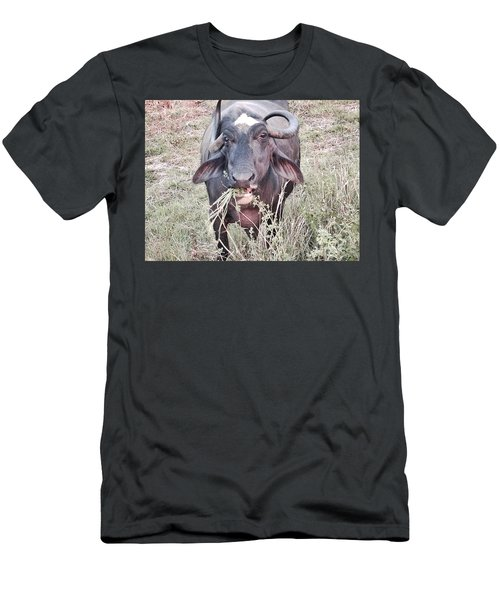 Wilds Of Buffalo Men's T-Shirt (Athletic Fit)