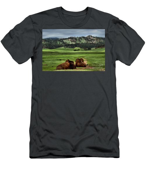 Wind Cave Bison Men's T-Shirt (Athletic Fit)