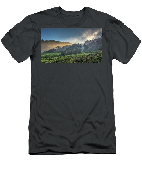 Windswept Trees On The Oregon Coast Men's T-Shirt (Slim Fit) by Pierre Leclerc Photography