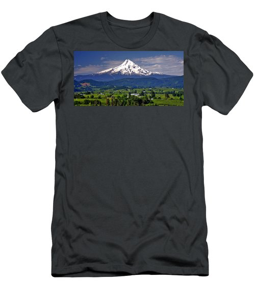 Wine Country Men's T-Shirt (Slim Fit) by Scott Mahon