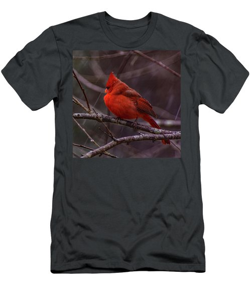Winter Crimson  Men's T-Shirt (Athletic Fit)