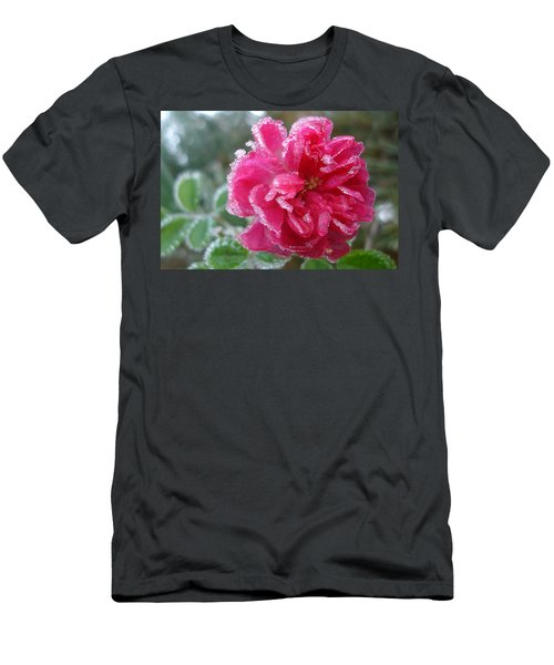 Winter Rose Men's T-Shirt (Athletic Fit)