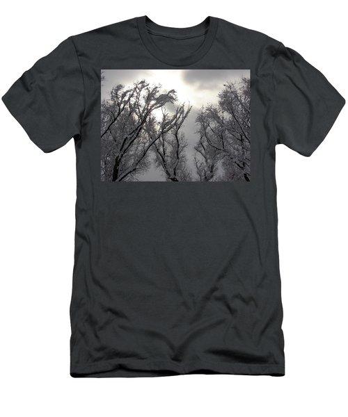 Winter Solstice Utah Men's T-Shirt (Athletic Fit)