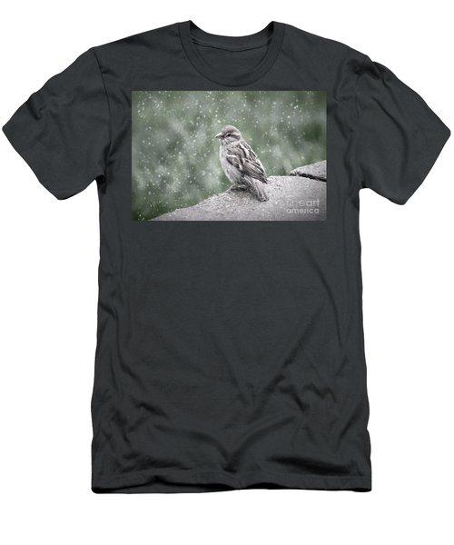 Winter Sparrow Men's T-Shirt (Athletic Fit)