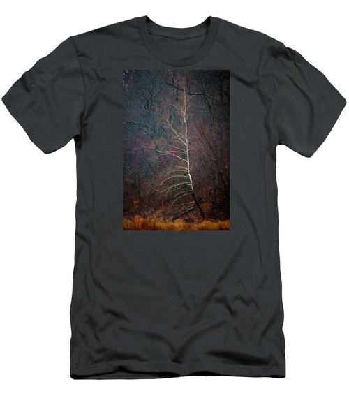 Winter Sycamore Men's T-Shirt (Athletic Fit)