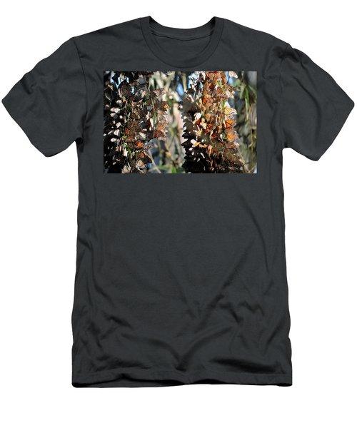 Wintering In Santa Cruz Men's T-Shirt (Athletic Fit)