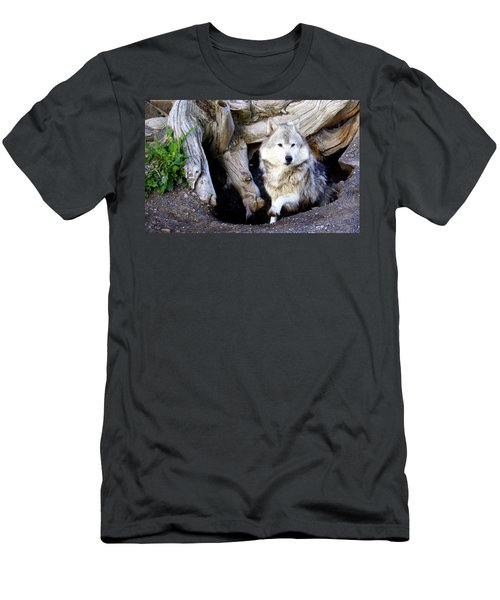 Wolf Den 1 Men's T-Shirt (Athletic Fit)